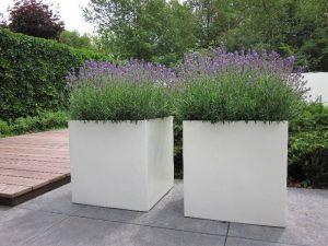 plantenbak-polyester lavendel plastic plantenbakken tuin